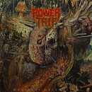 POWER TRIP - Manifest Decimation (2013) LP