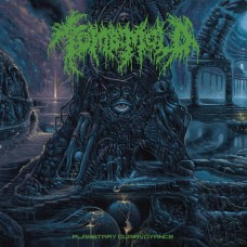 TOMB MOLD - Planetary Clairvoyance (2019) LP